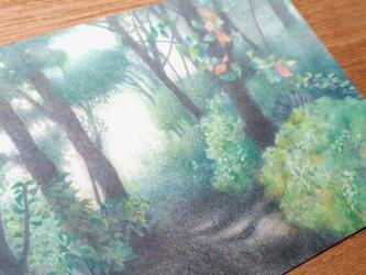 送料無料★色鉛筆画ポストカード3枚セットの画像