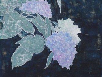 夜の花の画像