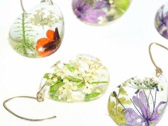 《セミオーダー》お好きな組み合わせを選べる 山野草 森の花のピアス・14kgf《イヤリング可 》の画像