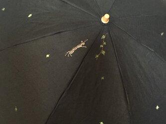 日傘 トラ猫とアイビーの画像