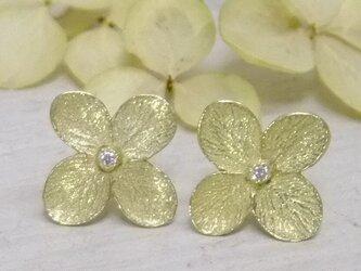 『花の誇り』アジサイ*K18dia pierceの画像