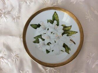 サツキの絵皿の画像