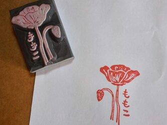 或る花の名前。(ひなげし)の画像