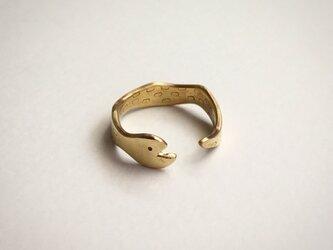 ウロボロス(ヘビ)のリングの画像