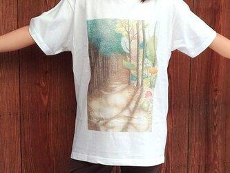 送料無料★森の木漏れ日Tシャツの画像