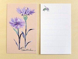 ミニカード 矢車菊の画像