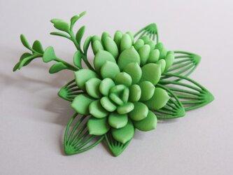 セダム ブローチ 緑の画像