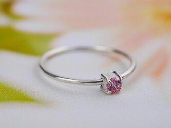 pink × ringの画像