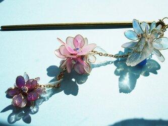 毬紫陽花(かんざし)の画像