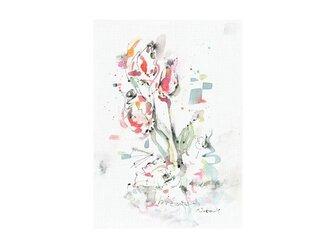 tulipの画像