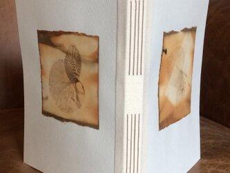 ユーカリの葉のエコプリントのコラージュのノートの画像
