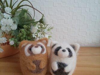 つぶらな瞳のレッサーパンダ ブラウン/ホワイト 羊毛フェルトの画像