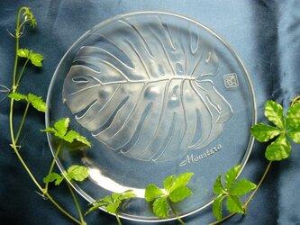 モンステラの皿 (1個)の画像
