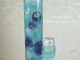 ハーバリウム♡ ブルー(ミニハーバリウム付)の画像