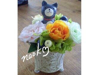 猫ちゃん花畑 小の画像