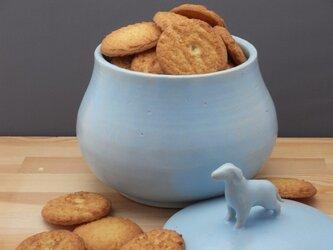 アイスブルー・クッキージャー・ワンコー1の画像