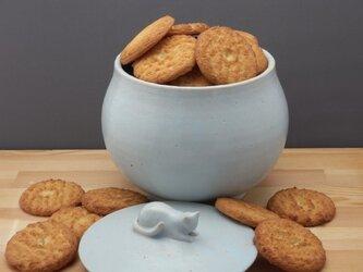 アイスブルー・クッキージャー・ニャンコー1の画像