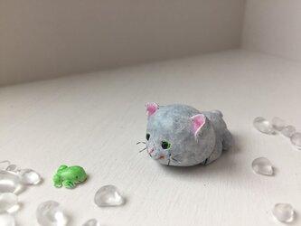 灰色猫さんとアマガエルの画像