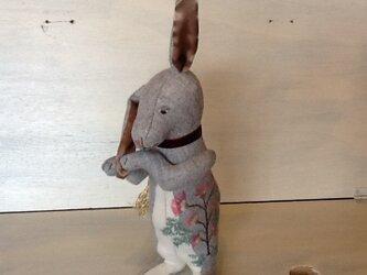 ねむの木兎の画像