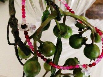 蛇イチゴ ブレスの画像