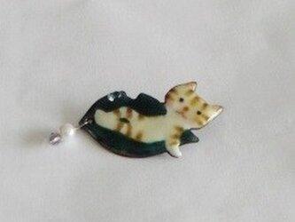 七宝 縞猫 葉っぱの上でポーズの画像