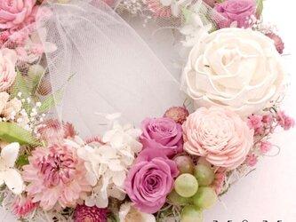 ピンク・ロンの画像