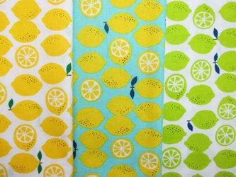 ☆布55×25 3枚入り☆レモン柄3種セットの画像