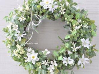 再販  白い花とグリーンのリース 初春の頃に:水仙 白 緑 リボンの画像