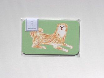 秋田犬のメッセージカードの画像