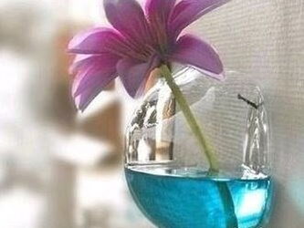 ガラスのインテリア。。。壁掛け花瓶(8cm) テラリウムにも!の画像