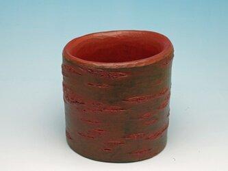 サクラ フリーカップ 015の画像