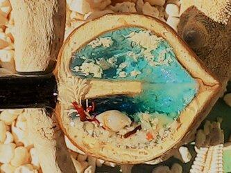 蓄光☆漂流胡桃の見た海(横挿しアート簪ロングこげ茶軸)の画像