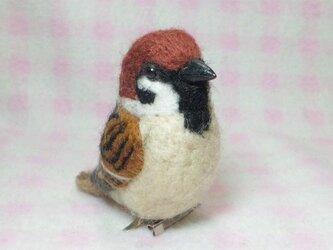 すずめ 雀 スズメ 野鳥 mini♪☆選べる2タイプ☆ クリップ付ブローチorマグネット 羊毛フェルトの画像