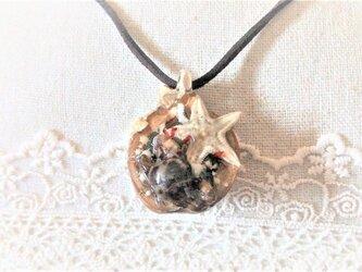 漂流胡桃の見た海(ヒトデとカニのネックレス)の画像
