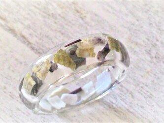 クラッシュウニの指輪の画像