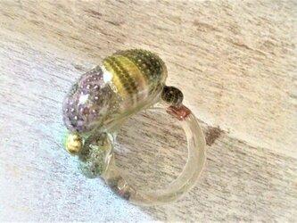 蓄光☆ウニウニの指輪の画像