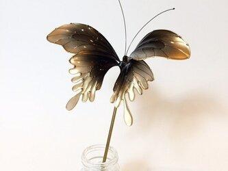 蝶かんざし -月光-の画像
