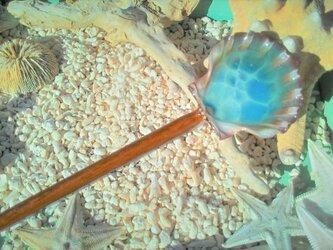 蓄光☆木彫り風イタヤガイの海かんざしの画像