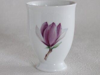 木蓮のカップの画像