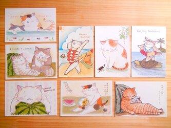猫のポストカード:夏のご挨拶A:お得8枚セットの画像