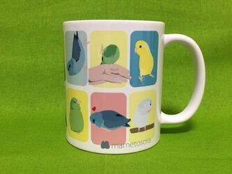 マメルリハインコのマグカップの画像
