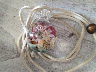 海が詰まった水滴の標本ネックレスの画像