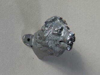 ライオンのフックの画像