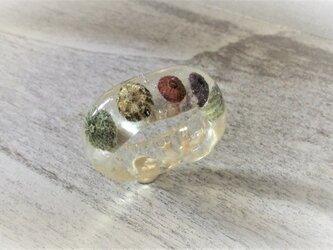 蓄光☆5つの小ウニの標本指輪の画像