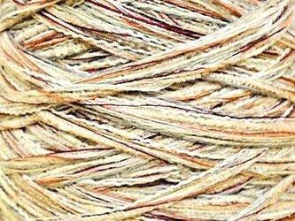 オリジナル糸 ミックスカラー 160 gの画像