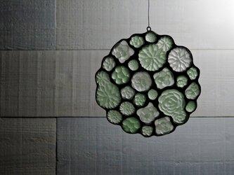 ガラスのスワッグ[多肉植物ガーデン]Lの画像