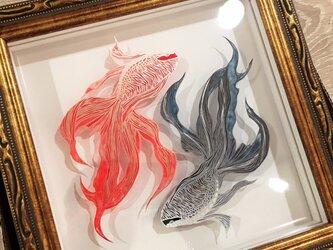 【受注生産】切り絵金魚「対極-taikyoku-」の画像