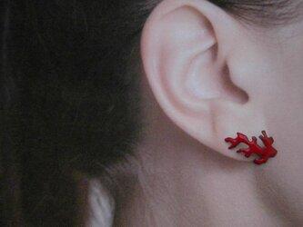 朱赤珊瑚七宝耳飾の画像