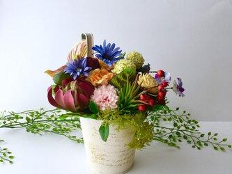 Botanical arrangeの画像