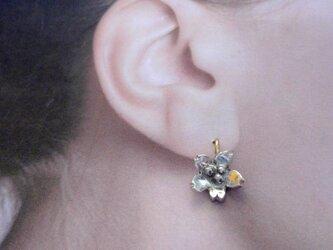 桜咲ク銀耳飾の画像